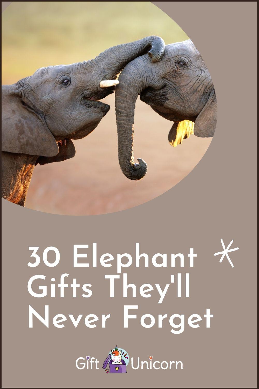 30 Elephant gift ideas pin image