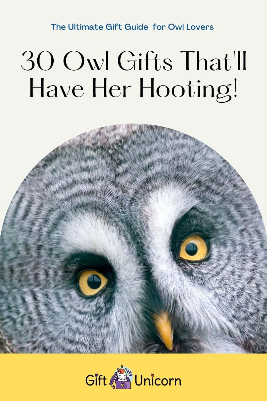 30 owl gifts pin image