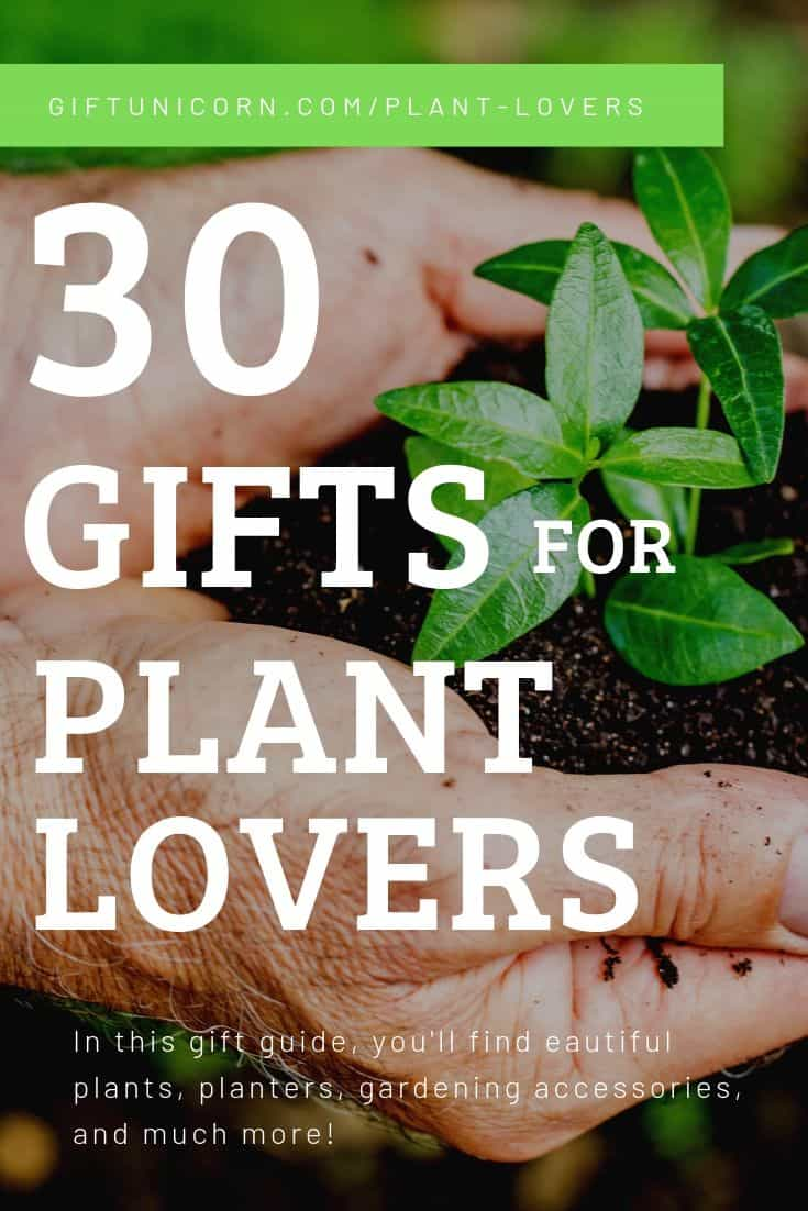 30 Gifts for plant lovers pin image