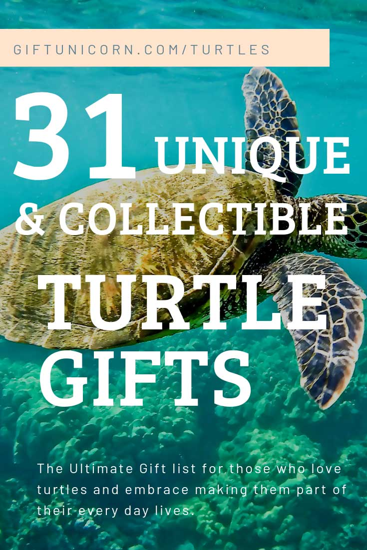 31 Unique and collectible turtle gifts