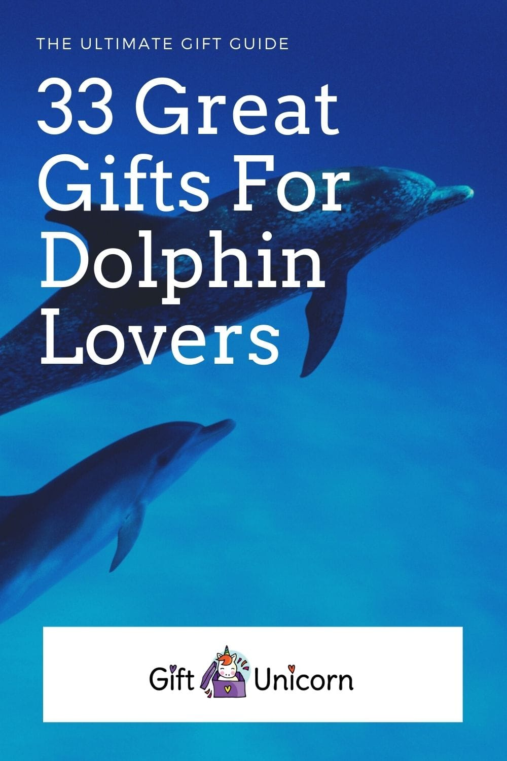 33 Gifts for dolphin lovers pin image