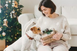 jack russel dog next to a woman
