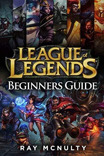 beginners guide book