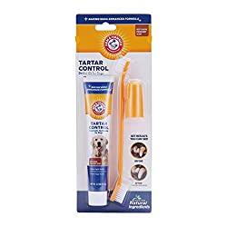 dog dental kit