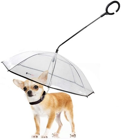 dog umbrella leash