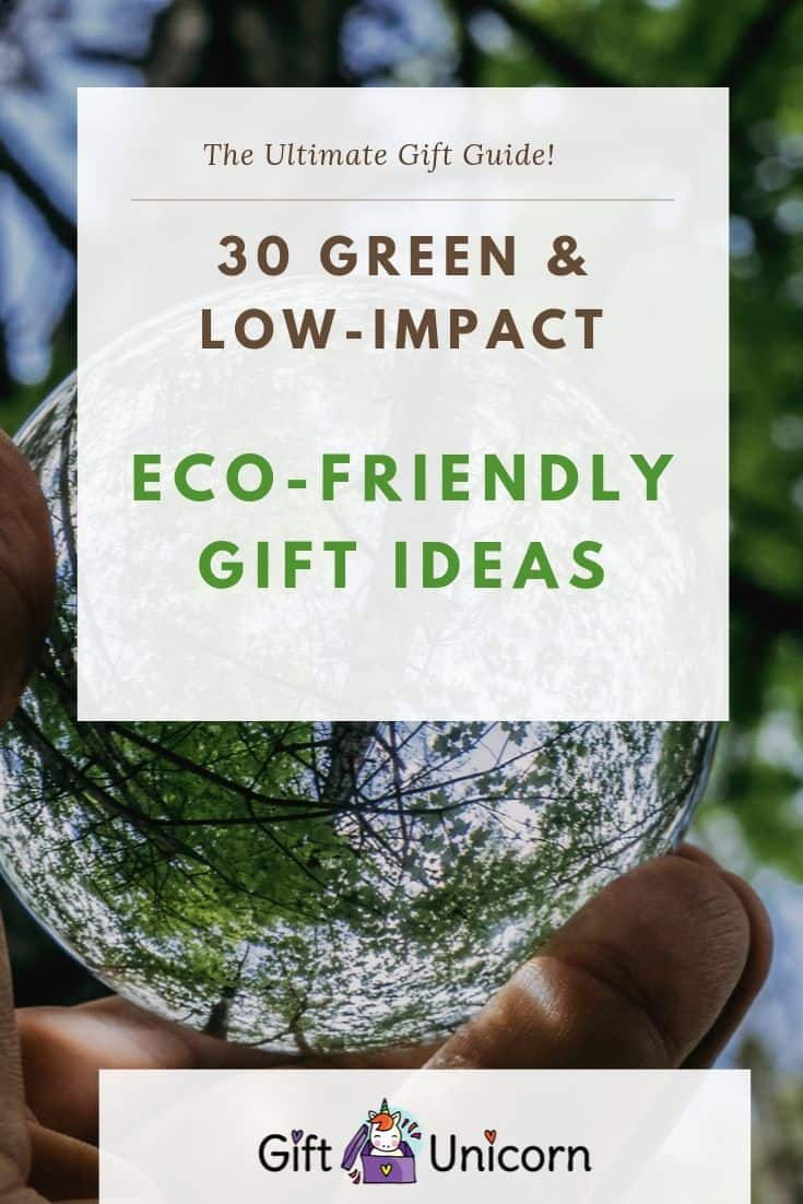 eco friendly gift guide pin image