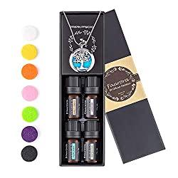 essential diffuser necklace