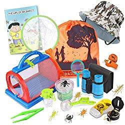 explorer and bug catching kit