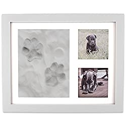 picture frame for dog