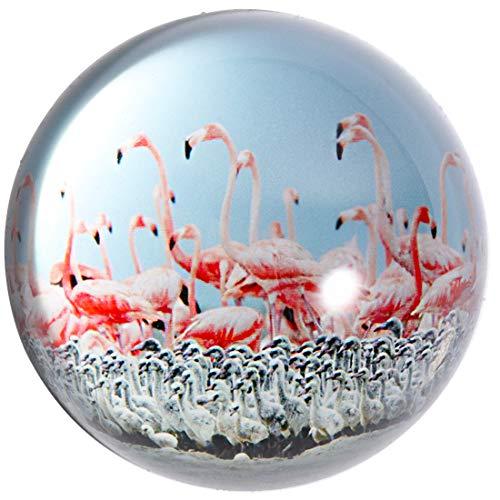 glass globe decoration