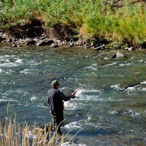 guided fly fishing