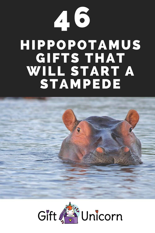 hippopotamus gifts pin image