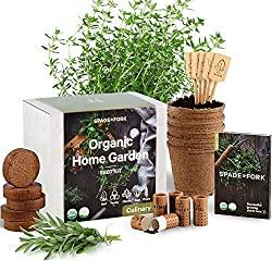 indoor herb garden starter kit