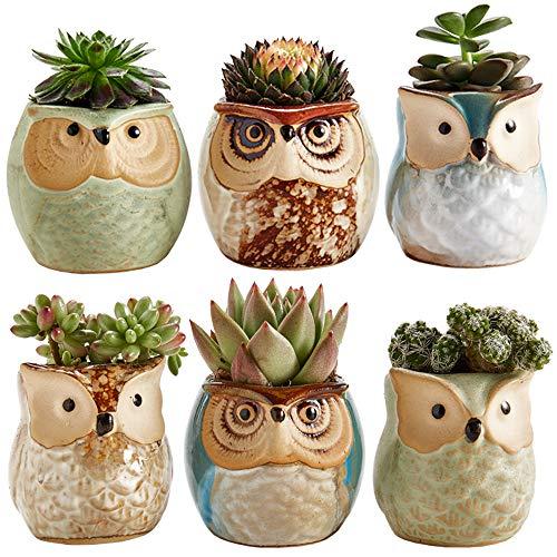 plant pots set