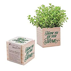 planter with seed kit
