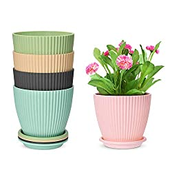 platic planters