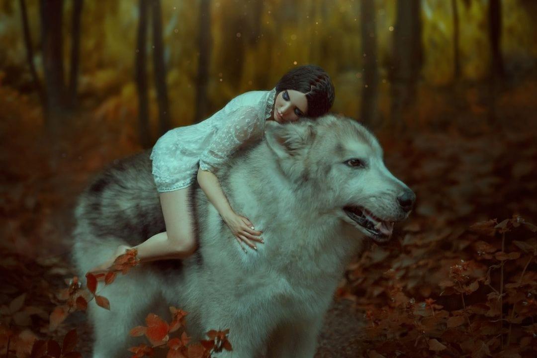 princess mononoke cosplay with a dire wolf
