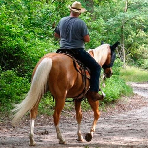 soldier hollow horseback riding