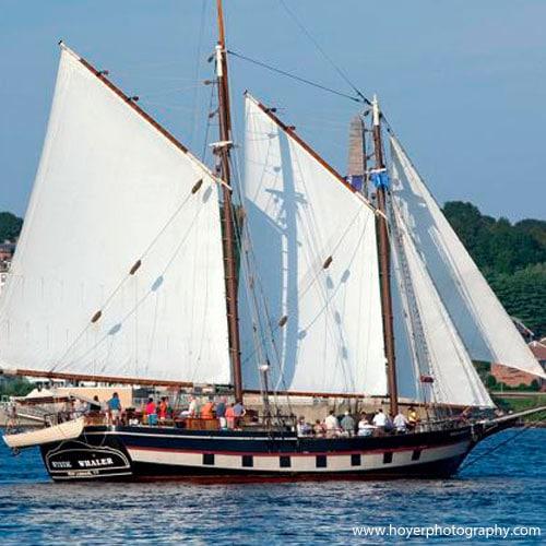 sunday brunch sail
