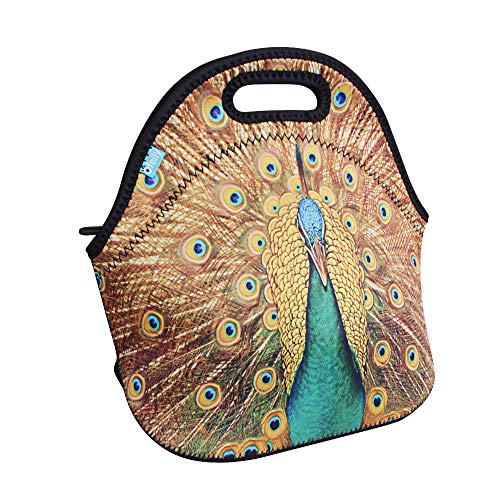 tote lunch bags
