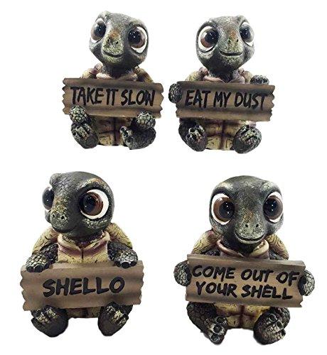 whimsical cute turtle set